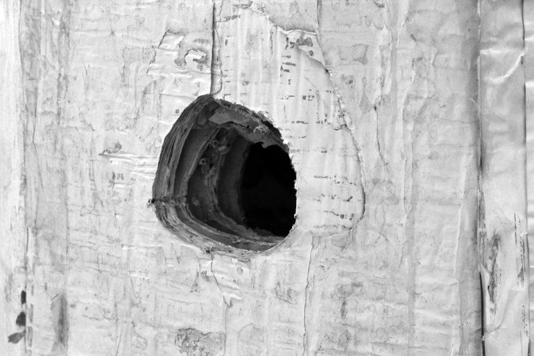 SilviaLorenz_column2012_detail_w